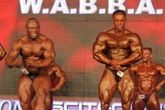 bodybuilders target248_0_ Obraz Royalty Free