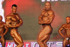 bodybuilders target723_0_ Zdjęcie Royalty Free