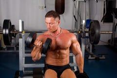 Bodybuilders training Royalty Free Stock Photo