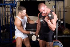 Bodybuilders training Royalty Free Stock Image