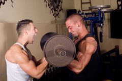 Bodybuilders training Stock Image