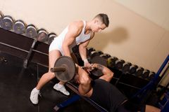 Bodybuilders training Stock Images