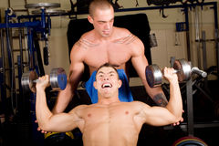 Bodybuilders training Stock Photo