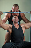 Bodybuilders training in gym Stock Photography