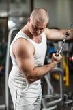 Bodybuildingübung Stockbild