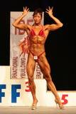 bodybuilding κόσμος πρωταθλήματος ib Στοκ Εικόνες