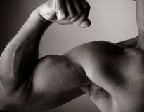 Bodybuilding. Photo of a man of 50 years old making bodybuilding royalty free stock images