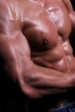 Bodybuilding   Arkivbild