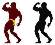 Bodybuilding Imagem de Stock Royalty Free