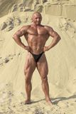 Bodybuilding Fotografia de Stock Royalty Free
