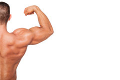 Bodybuilding background with copy space. Royalty Free Stock Photography
