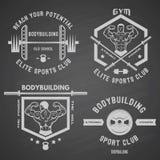 Bodybuilding biały etykietka set Obraz Royalty Free