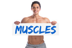 Bodybuilding bodybuilder body builder building muscles muscle st Stock Images