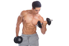 Bodybuilding bodybuilder muscles biceps body builder building du. Mbbell training isolated on a white background Stock Photography