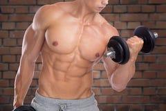 Bodybuilding bodybuilder muscles biceps body builder building po Royalty Free Stock Photo