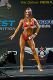 Bodybuilding Champions Cup Stock Photo