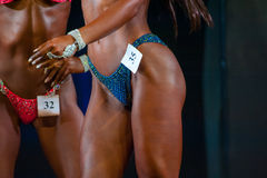 Bodybuilding Champions Cup Royalty Free Stock Image