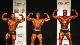 Bodybuilding Champs Pose Down Stock Image