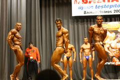 Bodybuilding competition Royalty Free Stock Photos