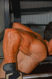 Bodybuilding. Detail of an athlete exercising Royalty Free Stock Photo