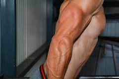 Bodybuilding. Detail of an athlete exercising Stock Images