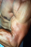 Bodybuilding. Detail of an athlete exercising Stock Photo