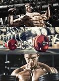Bodybuilding Stock Photography