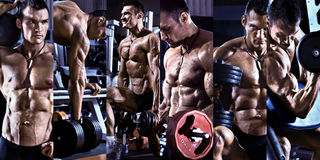 Bodybuilding. Execute exercise press with weight, in gym, collage of photo, blue, violet tone Royalty Free Stock Images