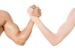 Bodybuilding & Fitness Topic: arm wrestling thin hand and a big strong arm isolated on white background in studio Royalty Free Stock Photos