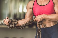 The bodybuilding girl is in the gym with a chain in her hands. Royalty Free Stock Photos