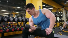 Bodybuilding in the gym - young muscular man performs training for biceps with dumbbells - slider. Bodybuilding in the gym - young muscular man performs training stock footage