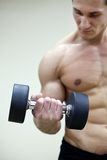Bodybuilding Stock Photos