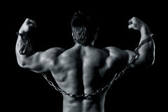 Bodybuilding man Royalty Free Stock Photo