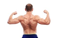 Bodybuilding. Man and his powerful body Stock Photography