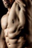 Bodybuilding man Royalty Free Stock Photo
