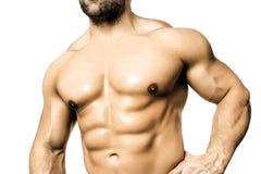 Bodybuilding man Stock Photos
