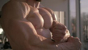 Bodybuilding, mięśniowy atleta mężczyzna robi rozgrzewce po władza treningu w budynku mięśniu w sprawność fizyczna klubie w słone zbiory