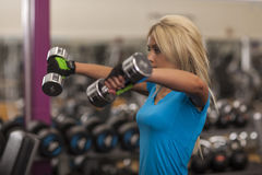 Bodybuilding. Strong fit woman exercising with dumbbells. girl lifting weights in gym Stock Photo