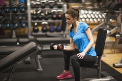 Bodybuilding. Strong fit woman exercising with dumbbells. Muscular girl lifting weights in gym. Stock Photo