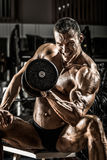 Bodybuilding Royalty Free Stock Image