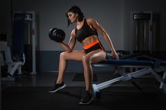 Bodybuilding. woman exercising with dumbbells. Muscular brunette girl lifting weights shot at the gym on dark royalty free stock images