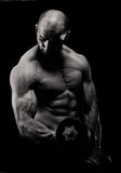 Bodybuilding Workout for Biceps Royalty Free Stock Photography