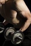 Bodybuilding Stock Images