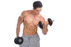 Bodybuildingkroppsbyggaren tränga sig in bicepskroppbyggmästaren som bygger du arkivbild
