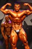 bodybuildingmästerskapfitparade Arkivfoto