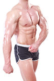 bodybuildingmuscules Arkivfoton