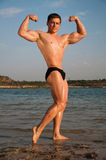 Bodybulder Stock Photo