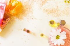 Bodycare και aromatherapy στοιχεία Στοκ εικόνες με δικαίωμα ελεύθερης χρήσης