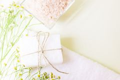 Bodycare και aromatherapy υπόβαθρο Στοκ εικόνες με δικαίωμα ελεύθερης χρήσης