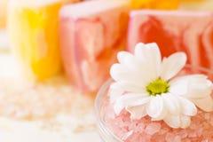 Bodycare и детали skincare Стоковые Изображения RF